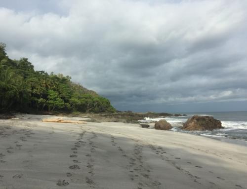 Costa Rica: cosa fare a Montezuma nella penisola di Nicoya